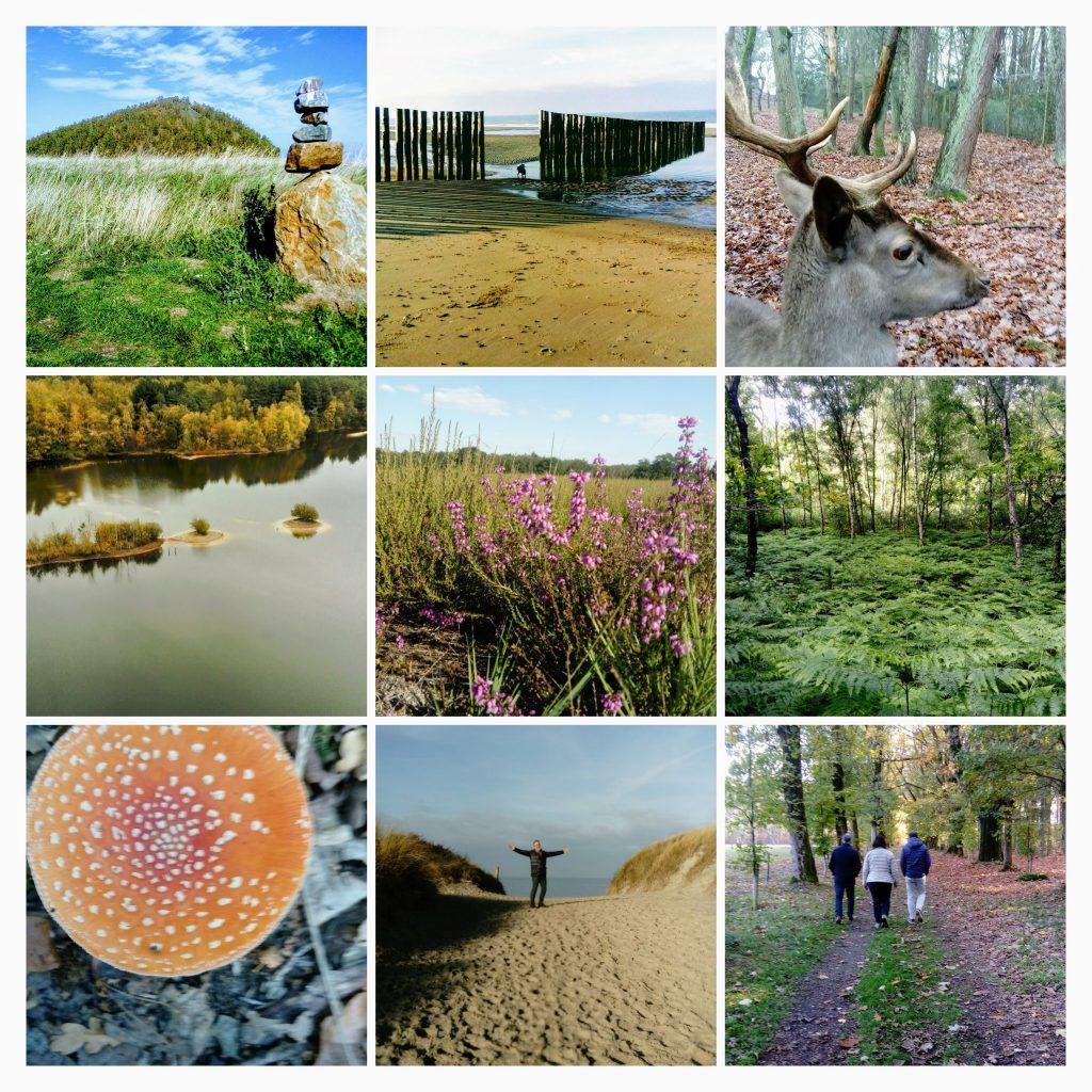 wandelen in de natuur, wandelen in Limburg, visit limburg
