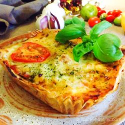 De bio lasagnes van Delhaize
