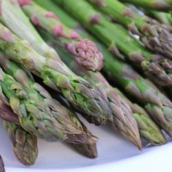 10 x de lekkerste recepten met asperges